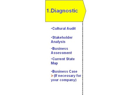 Going beyond lean assessments, full diagnostic toolkit for lean manufacturing